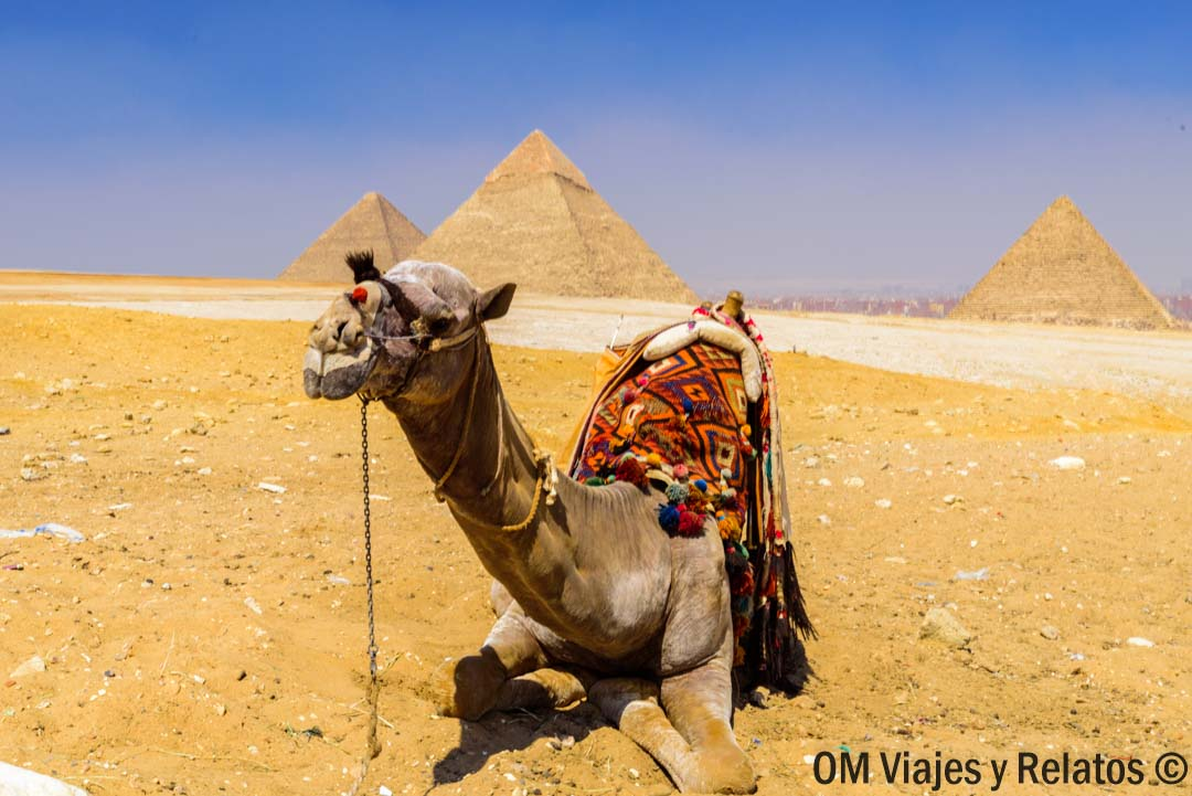 pirámides-Egipto-que-ver-en-Egipto