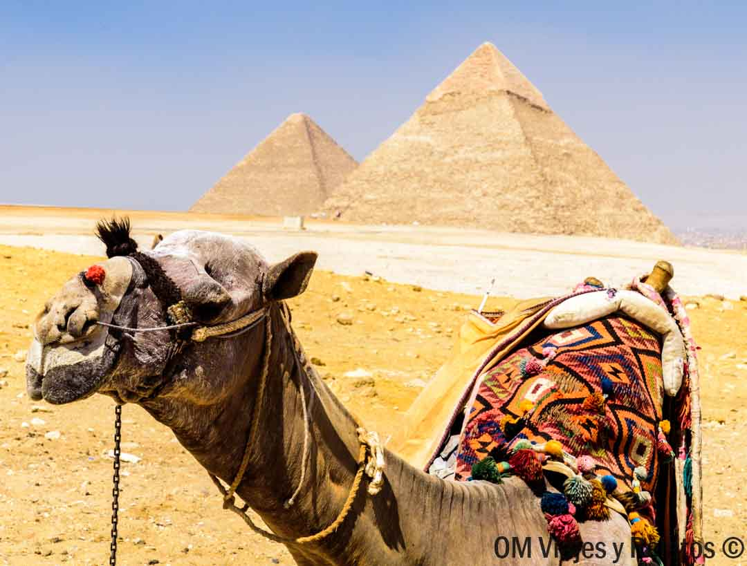 horarios-pirámides-Giza-recomendaciones