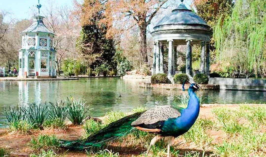Sitios Para Visitar Cerca De Madrid Que Te Encantaran