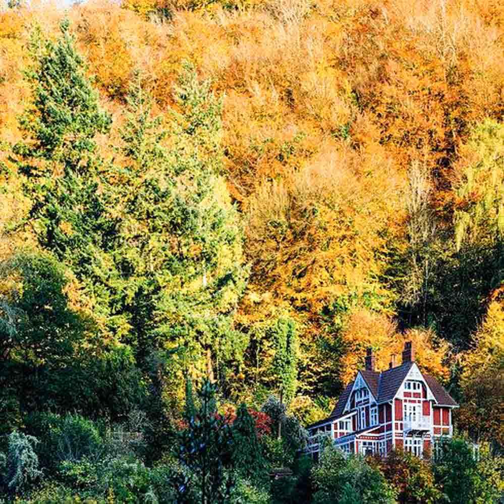 Gales-paisajes-otoño