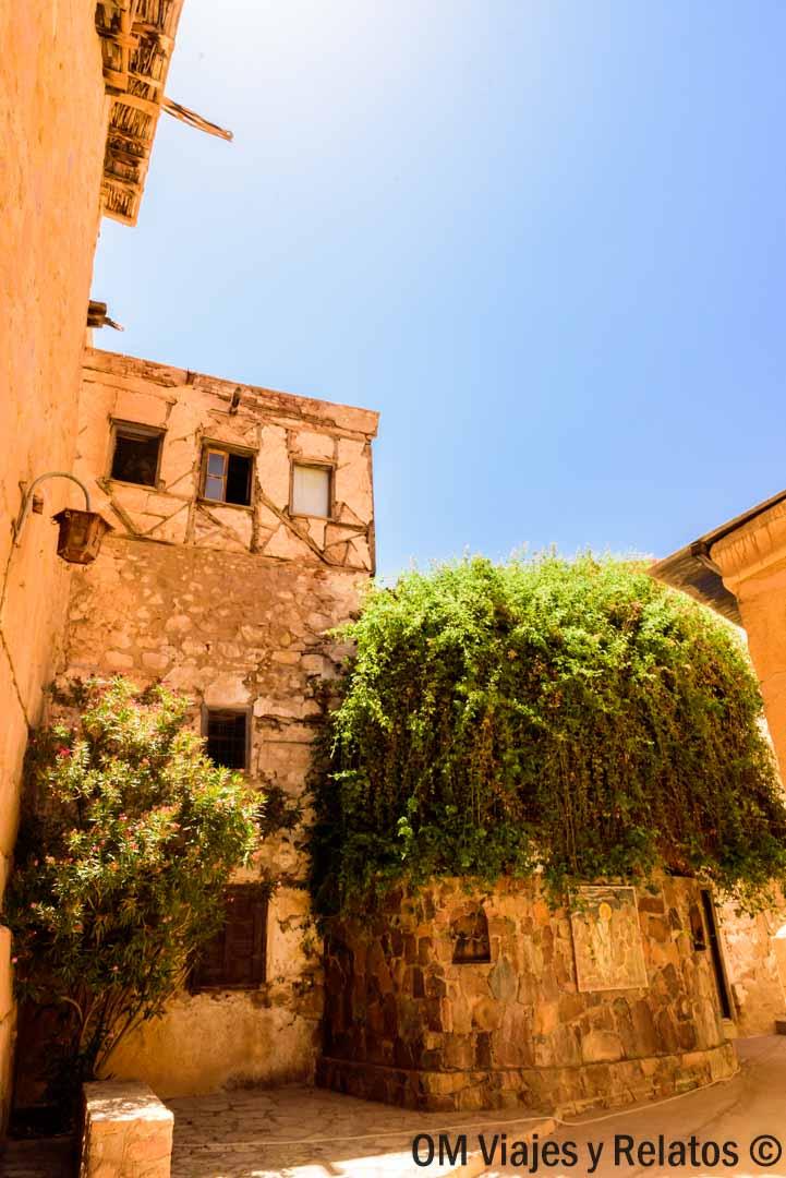 zarza-ardiente-Monasterio-Santa-Catalina
