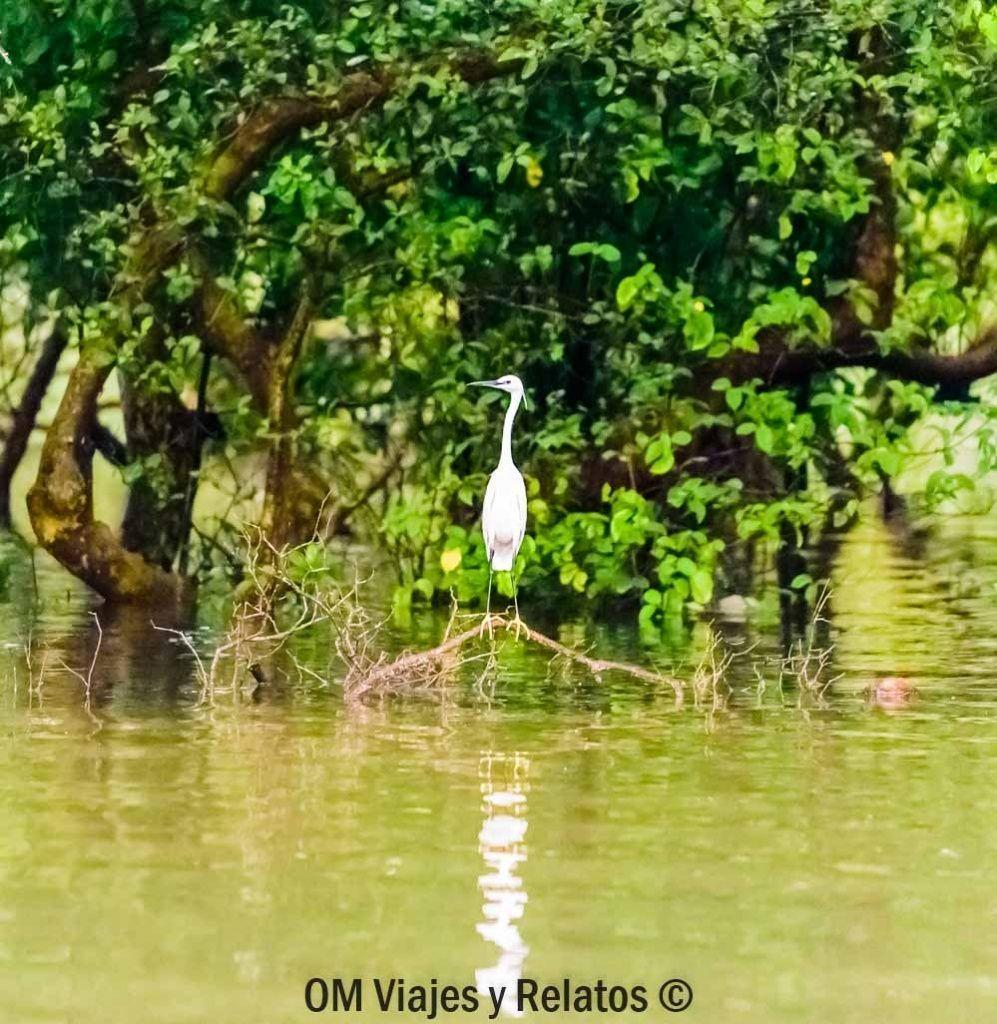 remansos-agua-Kerala