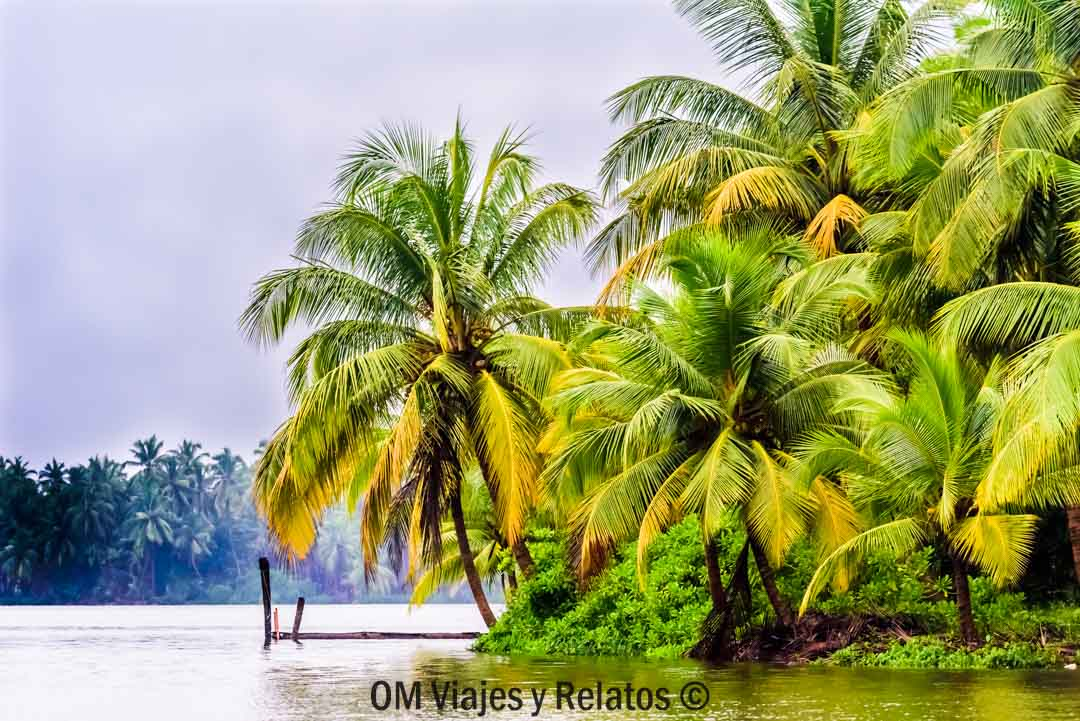 incredible-India-Kerala
