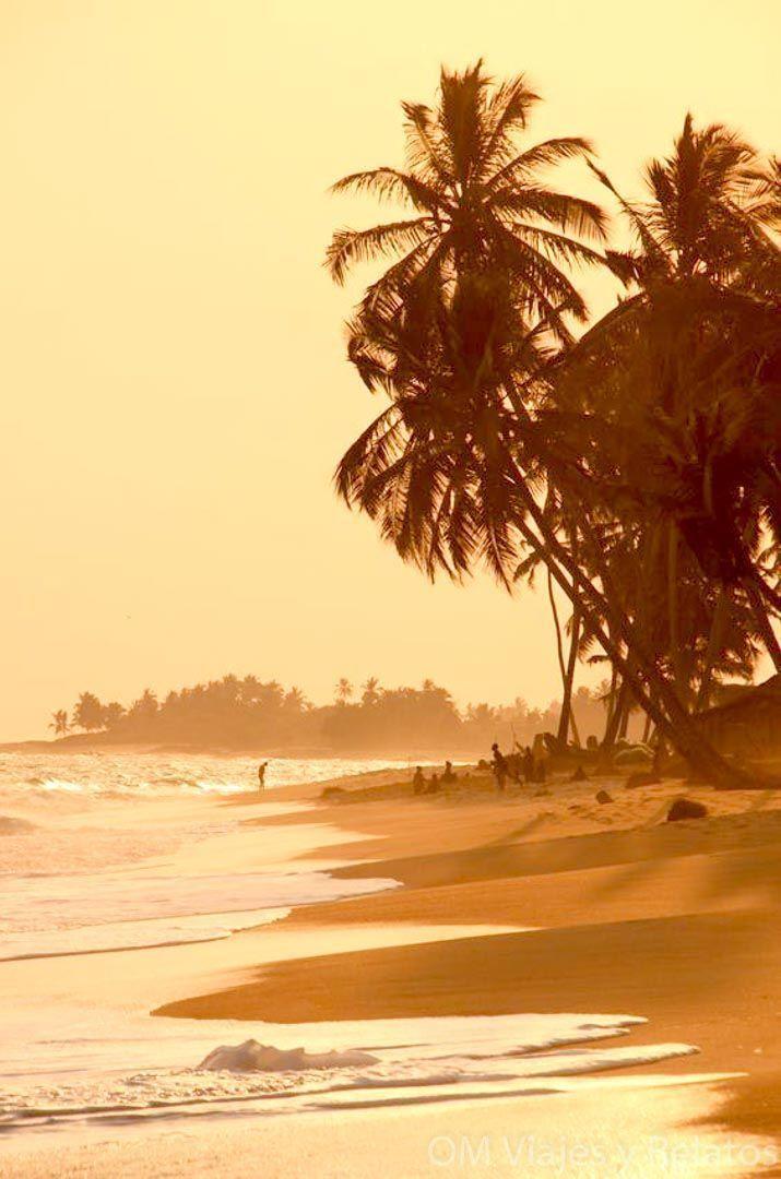 playas-de-Kerala