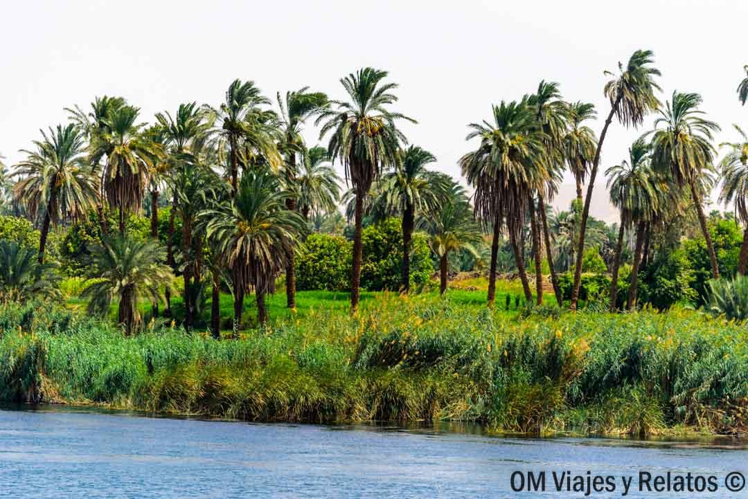 NILO-EGIPTO