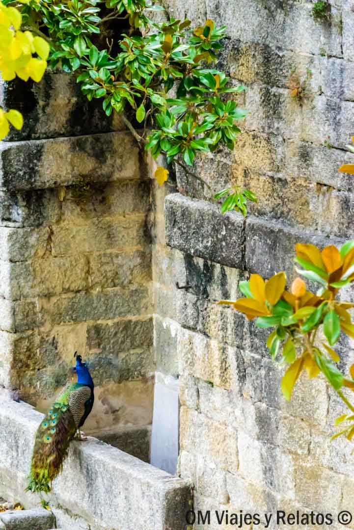 jardines-El-Escorial