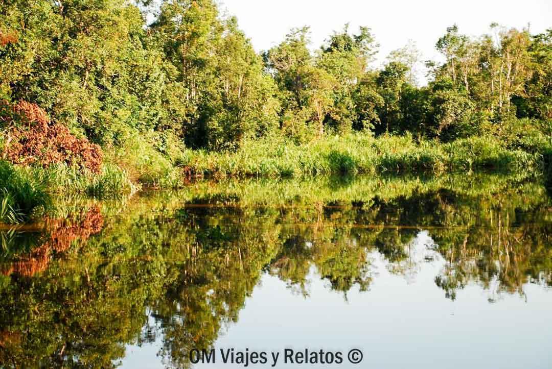 selvas-de-Borneo-excursión