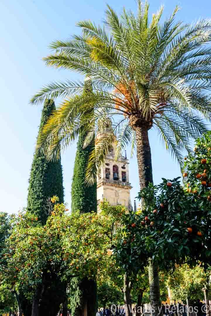 que-visitar-en-Córdoba-Patio-de-los-Naranjos