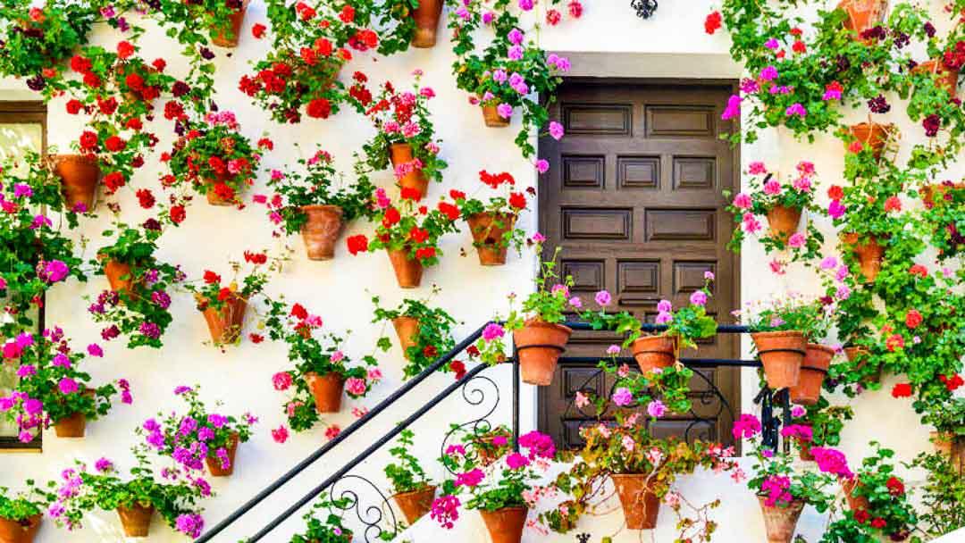 visitar Córdoba desde Granada