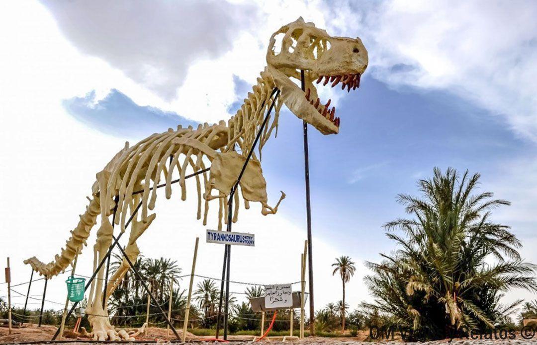 viajar-a-Marruecos-con-niños-carretera-fósiles