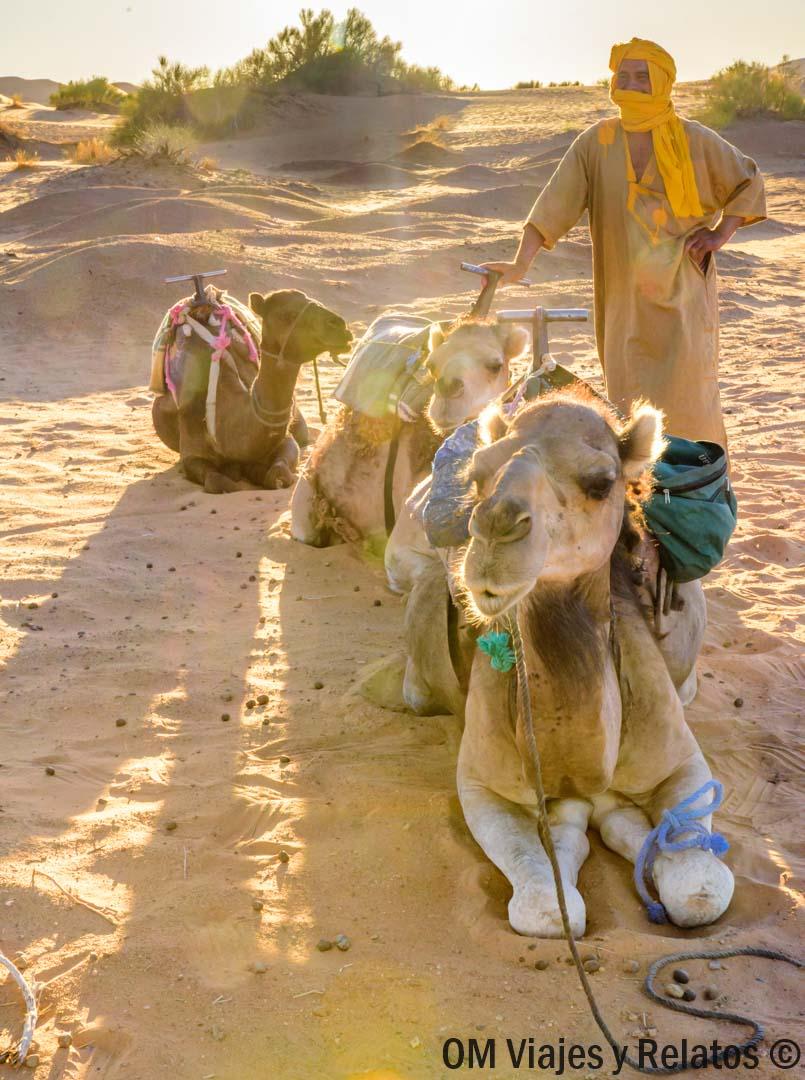 alquilar-coche-en-Marruecos-consejos