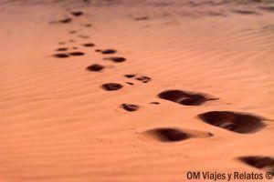 excursiones-desde-Marrakech-desierto-Marruecos