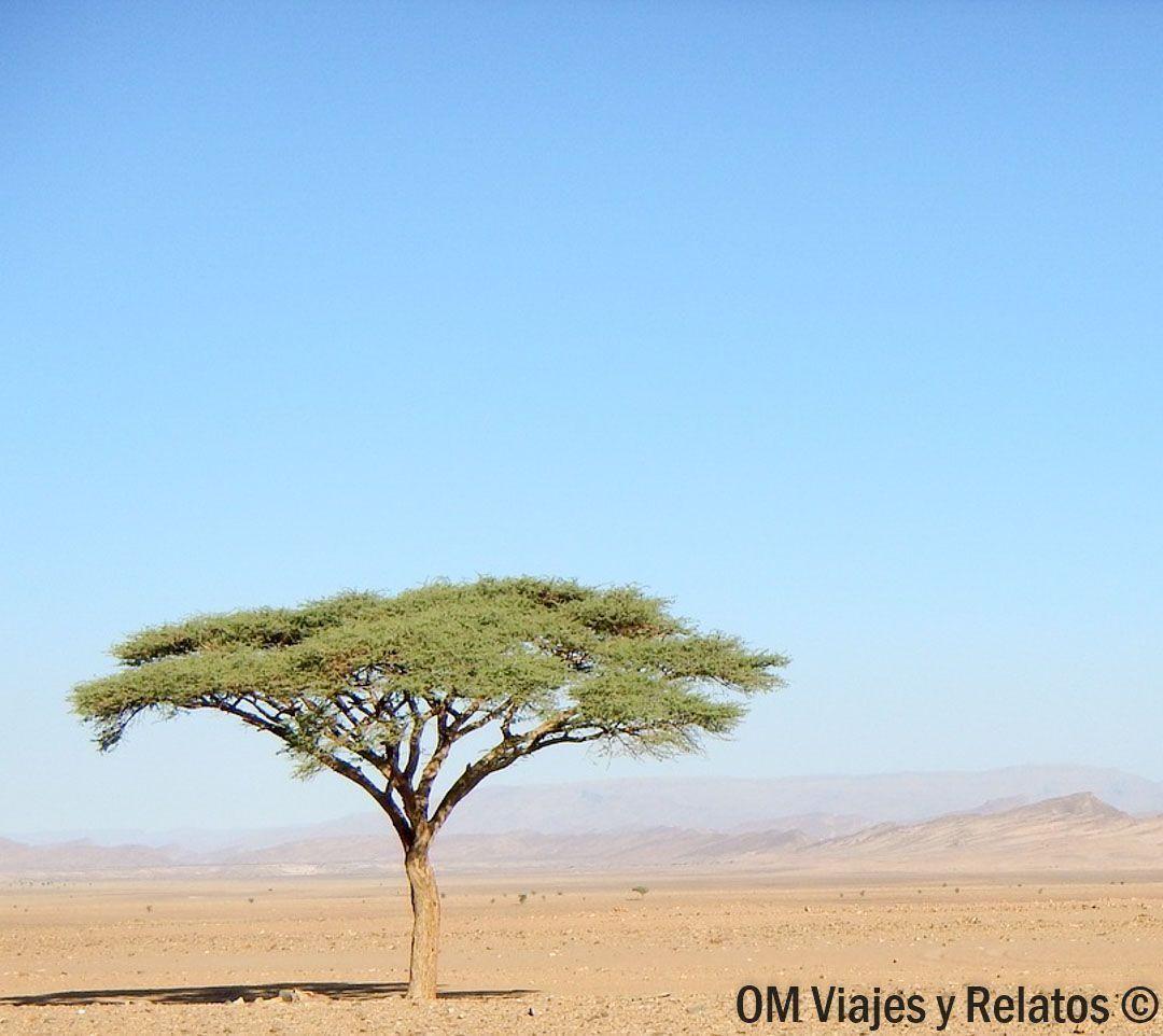 desierto-Zagora-Marruecos