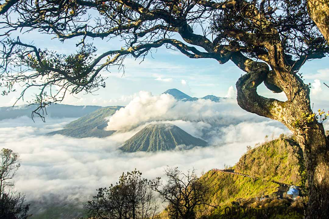tour-volcán-Bromo