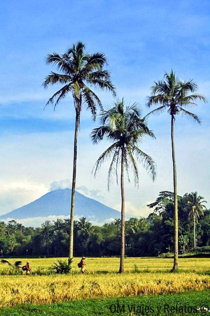 isla-de-Java-viaje