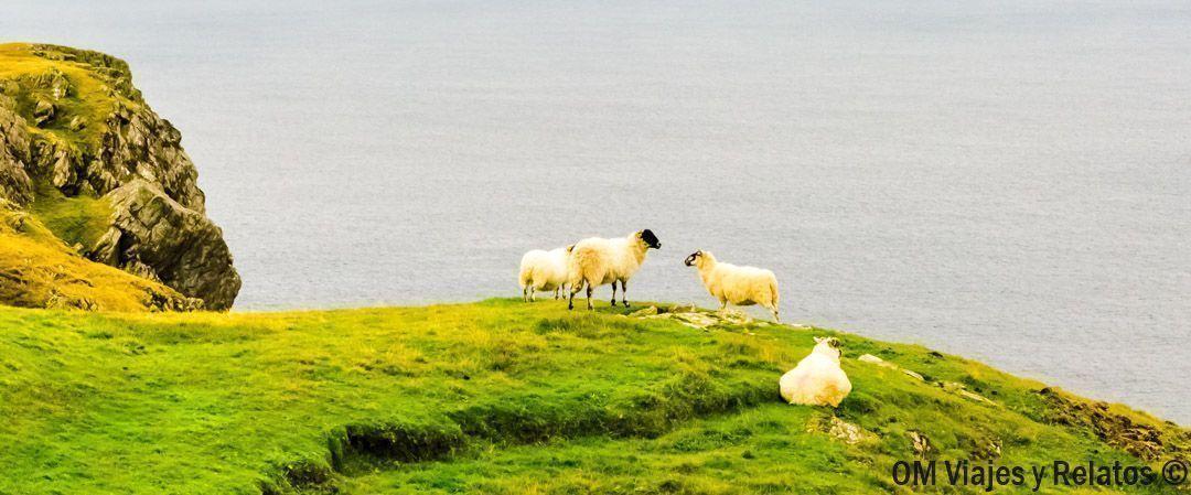 paisajes-del-norte-de-Irlanda
