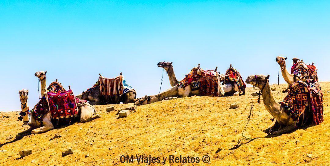 lugares-para-visitar-en-El-Cairo