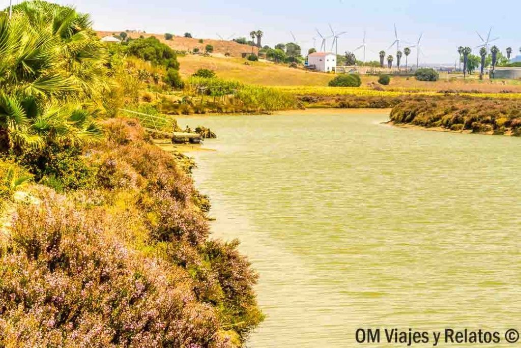 río-Salado-Conil-Cádiz