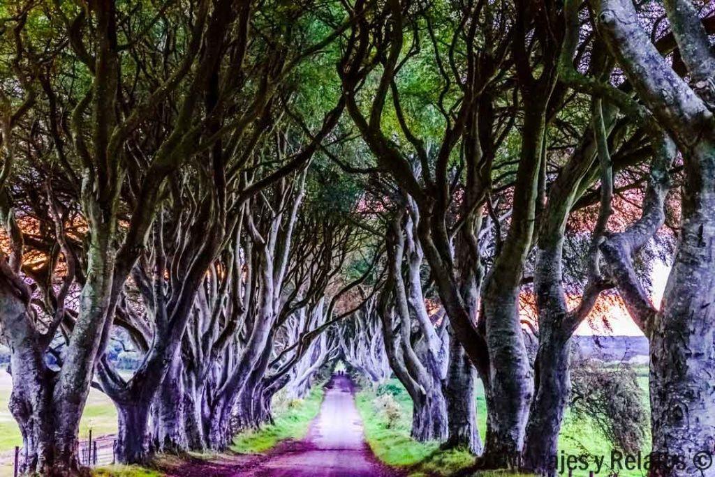 escenarios-juego-de-tronos-Irlanda-de-Norte