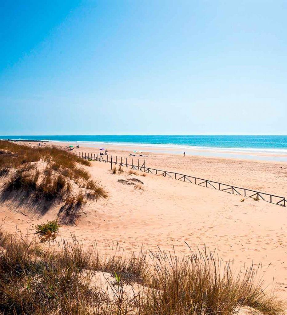 playas-bonitas-Cádiz-Playa-del-Palmar