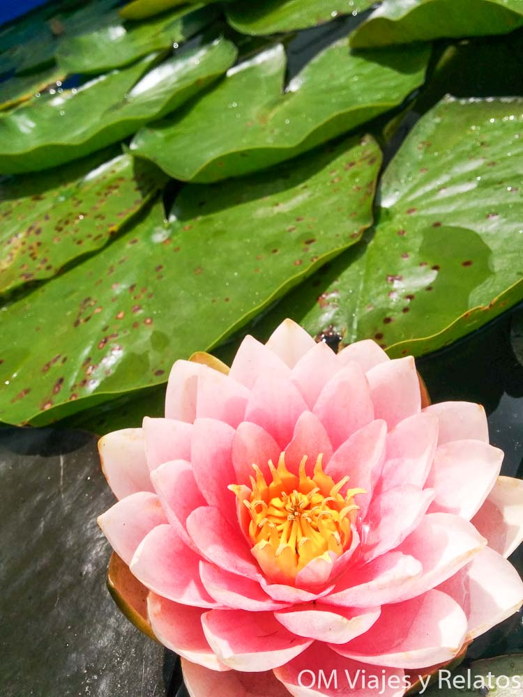 templos-de-Bali-más-importantes