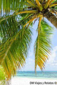 cómo-viajar-barato-Maldivas