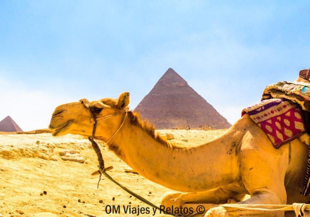 INFORMACIÓN-PARA-VIAJAR A-EGIPTO