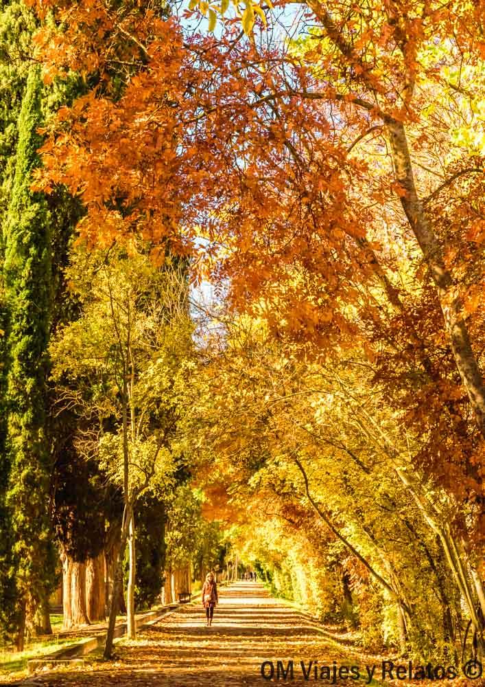 visitar-Jardín-del-Príncipe-Aranjuez-otoño