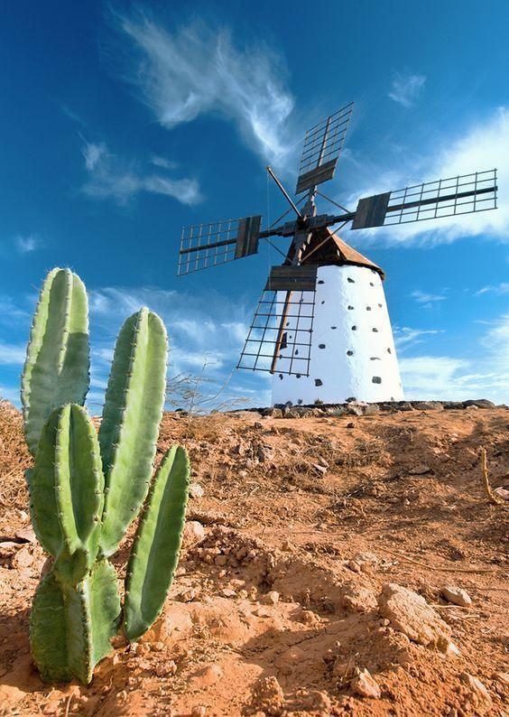 que-ver-en-Fuerteventura-molinos